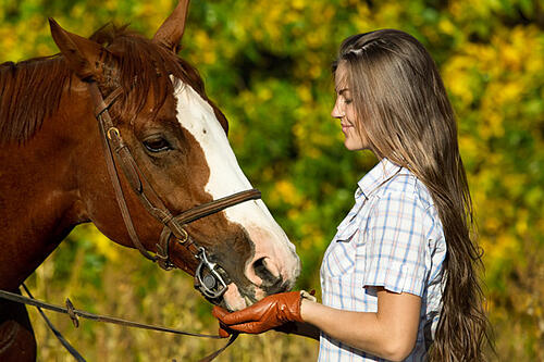 horse-and-woman-shutterstock_88215292